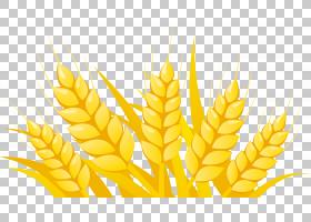 小麦PNG剪贴画食品,电脑壁纸,生日快乐矢量图像,黄金,大米,情节,