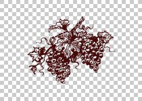 红葡萄酒香槟普通葡萄藤卡瓦DO,艺术品葡萄PNG剪贴画食品,创意艺