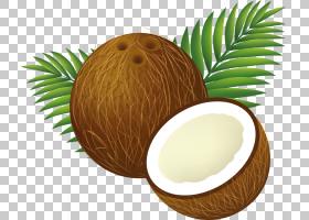 椰子水椰奶,椰子PNG剪贴画食品,arecaceae,水果,免版税,水果坚果,