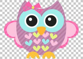 Baby Owls Bird,波西米亚风PNG剪贴画动物,脊椎动物,猫头鹰,桌面