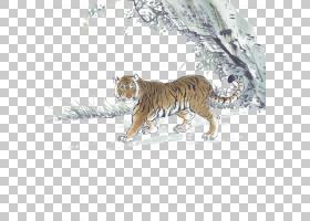 虎中国新年中国生肖兔,老虎PNG剪贴画哺乳动物,动物,猫像哺乳动物