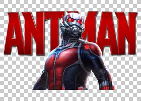 黄蜂蚂蚁人汉克Pym奇迹电影宇宙,蚂蚁人Pic PNG剪贴画超级英雄,搞