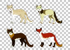 晶须红狐狸猫尾巴,猫PNG剪贴画哺乳动物,动物,猫像哺乳动物,食肉