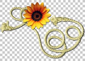 软件,绳PNG剪贴画水彩画,技术,向日葵,草,版权,红绳,花,跳绳,鲜花