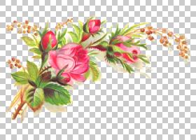 鲜花花束,可爱的s,粉红色的花朵画PNG剪贴画插花,叶,摄影,剪贴画,