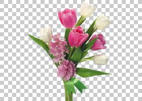 鲜花花束,春天的郁金香花束和风信子透明,粉红色和白色的花朵PNG