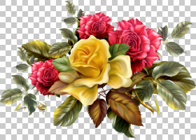 鲜花花束板-Bandde Interflora Bloempjesluis,花PNG剪贴画插花,