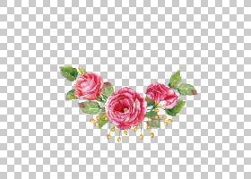 鲜花花束水彩画海滩玫瑰,水彩玫瑰材料,三个红色花瓣PNG剪贴画水