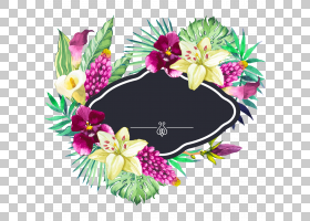 花园,手绘水彩美丽的花边框,黑色,绿色和黄色花瓣PNG剪贴画水彩画