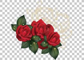 花园玫瑰花,春天海玫瑰创意PNG剪贴画其他,插花,人造花,鲜花,玫瑰