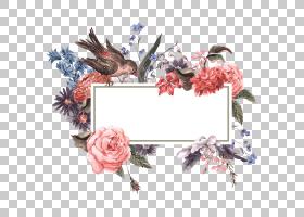 花婚礼邀请股票摄影,花和鸟,绘PNG clipart的红色和白色花水彩画,