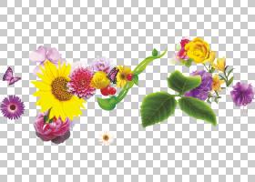 花艺设计菊花花洋甘菊,洋甘菊PNG剪贴画插花,叶子,电脑壁纸,春天,