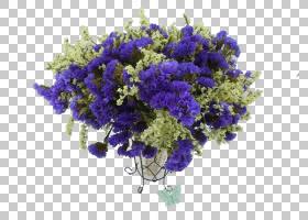 花艺设计薰衣草花束,薰衣草花束PNG剪贴画紫色,蓝色,插花,紫罗兰,