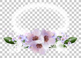 花花圈框架,花,框架PNG剪贴画框架,插花,金色框架,紫罗兰色,时尚