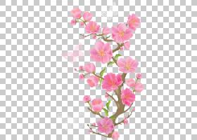 粉红色的花朵,春天分支与蝴蝶,蝴蝶在花PNG剪贴画插花,心,科,植物