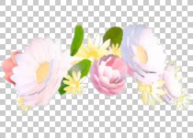 花Snapchat冠,花PNG剪贴画插花,头饰,电脑壁纸,贴纸,桌面壁纸,玫