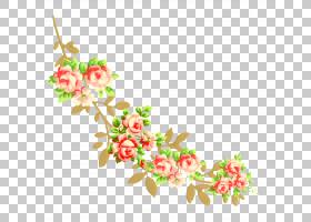 花卉设计,花卉图案PNG剪贴画插花,叶,分支,植物茎,枝,水果,数字图