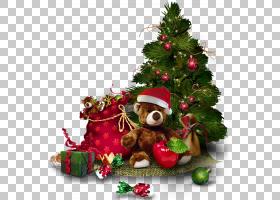 圣诞树,与玩具熊的透明圣诞树,绿色圣诞树PNG clipart装潢,圣诞节