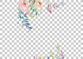 婚礼邀请纸花水彩画水墨,水,彩色墨水花,粉红色花瓣PNG剪贴画插花