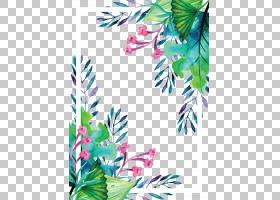 欧几里得,夏天植物水彩手绘边框,绘画花相框PNG剪贴画水彩绘画,边