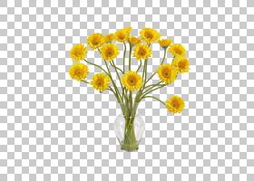 德兰士瓦雏菊Floristry人造花丝绸,花瓶PNG剪贴画插花,花瓶,向日