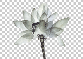 水墨画设计师,墨水莲花PNG剪贴画墨水,叶子,中国风格,颜色,花卉,