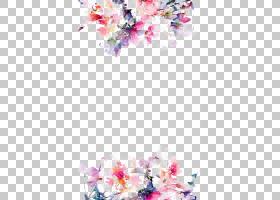 IPhone 5s花纸,水彩花边框,粉红色的花朵在白色背景PNG剪贴画水彩