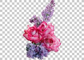 Khvamli 3月8日国际妇女节女人YouTube,花PNG剪贴画爱,紫色,花卉