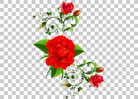国际妇女节祝福幸福贺卡,红玫瑰装饰,红色花朵PNG剪贴画插花,人造