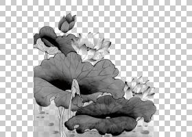 中国国画工笔,莲花PNG剪贴画墨水,叶子,类,中国风格,摄影,单色,装