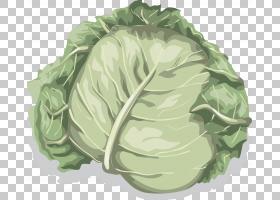 卷心菜花椰菜蔬菜生菜,卷心菜PNG剪贴画叶蔬菜,食品,叶,生日快乐