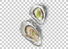 牡蛎计算机图标,彩绘牡蛎的PNG剪贴画水彩画,白色,3D计算机图形学