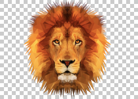 塞伦盖蒂美国狮子YouTube商业,狮子PNG剪贴画哺乳动物,动物,猫像图片