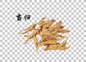 女性人参中国当归白芷中草药中药,当归PNG剪贴画食品,中式风格,气