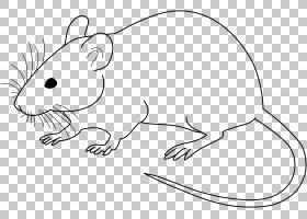 实验室老鼠实验室老鼠绘图,鼠标陷阱PNG剪贴画哺乳动物,动物,carn