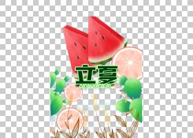 卡通水果立夏PNG素材