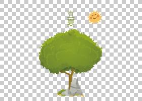 卡通风太阳树木背景立夏PNG素材