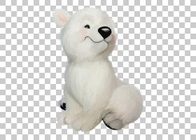 北极熊,北极熊,你听到了什么?宝贝北极熊棕熊,北极熊PNG剪贴画白