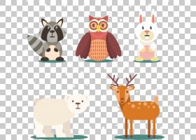 北极熊动物,五个可爱的冬季动物PNG剪贴画冬季,猫头鹰,卡通,鹿,冬