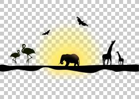 北长颈鹿剪影欧几里德大象,动物剪影PNG clipart动物,摄影,科,生