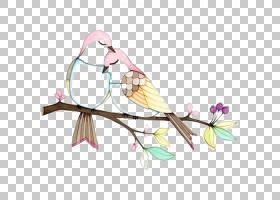 爱情鸟绘图,鸟类PNG剪贴画爱,水彩画,铅笔,分支,脊椎动物,颜色,树