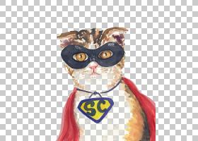 蝙蝠侠为什么画猫狗,蝙蝠侠猫PNG剪贴画水彩画,猫像哺乳动物,时尚