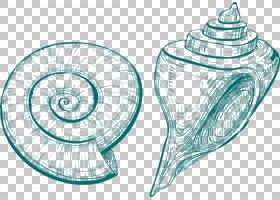 贝壳,手绘海螺PNG剪贴画水彩画,绘画,摄影,螺旋,手绘,卡通,免版税