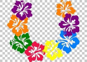 Hawaii Lei Frangipani,夏威夷卡通的PNG剪贴画插花,花卉,免版税,