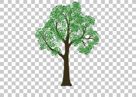 Rivas Tree Service修剪,植物PNG剪贴画叶,分支,草,植物,植物边界