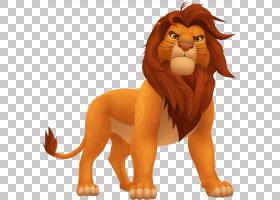 Simba Scar狮子王Mufasa,迪士尼肚皮戒指PNG剪贴画哺乳动物,猫像