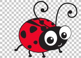 T恤瓢虫瓢虫绘图,瓢虫PNG剪贴画昆虫,卡通,鼻子,免版税,可爱,波尔