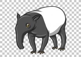 Malayan tap皇家,,卡通婴儿大象PNG剪贴画卡通人物,白色,哺乳动物