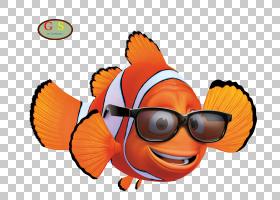 Marlin Nemo Film,蟑螂PNG剪贴画食品,动物,橙色,电脑壁纸,卡通,