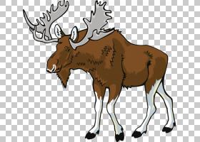 Deer Elk Moose,手,画驯鹿PNG剪贴画水彩画,鹿茸,画,颜色,野生动